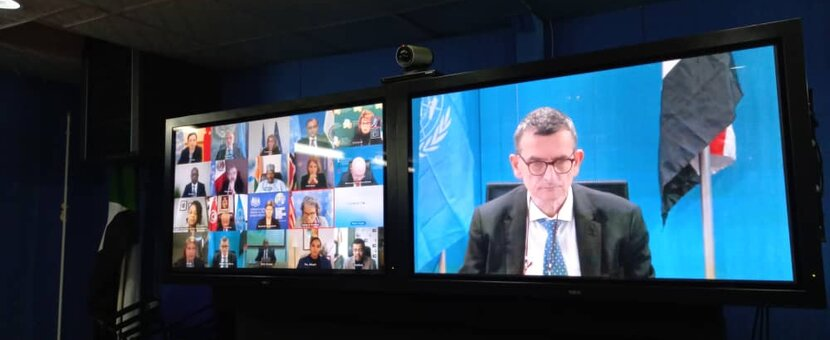 SRSG Perthes briefs the Security Council